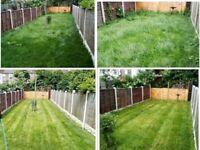 Garden clean/ weeding/ lawn/ tidy up garden