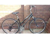 Ladies Giant Cypress hybrid bike (can deliver)