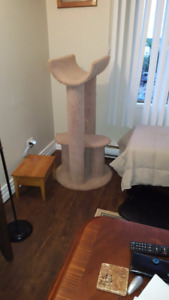 Large Cat Stand  SOLD