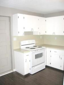Centrally located 2 Bed 1 Bath Lower Level Entry Suite