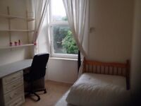 FESTIVAL LET - Single room in friendly flat right on the meadows!