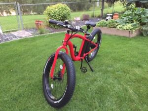 Fat tire electric bike - great for commuting year round!