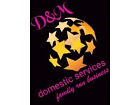 D&M domestic cleaning services