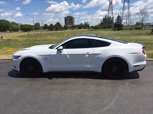 2016 Mustang GT Lease Takeover