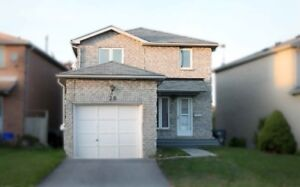 Ready To Move In Fantastic 3 Bdrm Home Located At Rangeley Dr