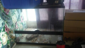 2 reptile tanks 100 for both obo