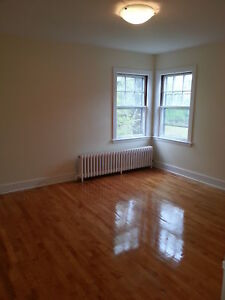 SOUTH END HUGE 1 BDRM FLAT COMPLETELY RENOVATED SEPTEMBER 1ST