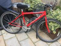 """Men's 18"""" Firefly bike bicycle. Free delivery"""