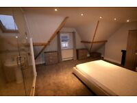 En-Suite Room in a Professional House