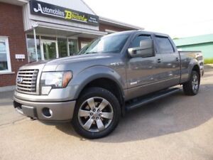 2012 Ford F-150 FX4 CREW CAB ECOBOOST 4X4