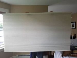 72x54 Levelor Pleated blind