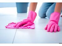 HIGH STANDARDS CLEANING SERVICES £10 PER HOUR