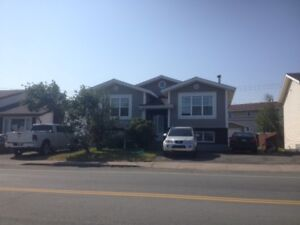 503A Newfoundland Dr. – 1 Bdrm Beautiful Apartment In East End
