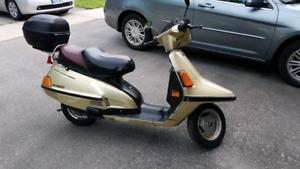 """1985 Yamaha Riva xc180 """"Gold Thunder"""""""