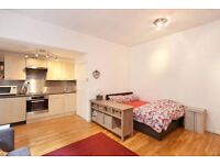 Attractive double studio flat in Notting Hill available for 1 week rental in August - Bills included
