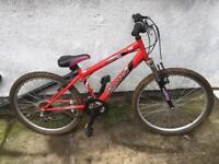 """Bike 24"""" wheels"""