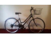 Hawk Woodland Ladies City Bike with Basket