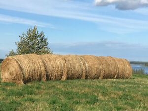 Large Round Hay Bales Two Hills