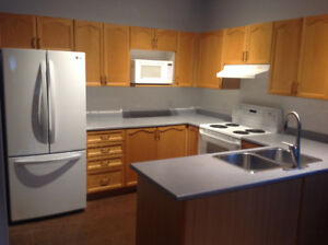 Full Kitchen, Oak Cupboards, Countertop and Sink for sale