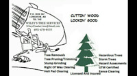 Professional Tree Removals and Pruning