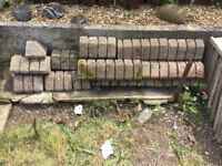 Bricks for path edge/drive