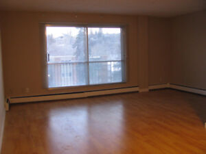 Sunalta - renovated 1BR apt only 10 min to downtown Calgary