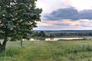 Fermette 133 acres