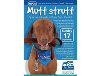 Mutt Strutt Sponsored Walk at Bute Park Cardiff in aid of Llys Nini RPSCA Cardiff to Swansea area