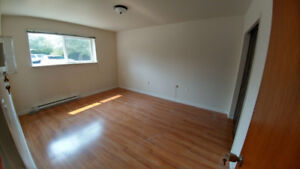2 BDR updated suite near UVic