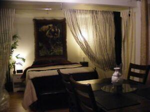 Chambre à louer (style loft), Val-D'or,  SPA, TV HD, internet