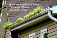 Gutter Eavestrough Cleaning Services