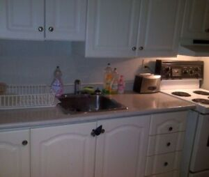 Spacious 2BR in trendy Little Italy near College & Bathurst!