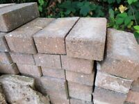 Approximately 250 to 300 bricks £30 the lot