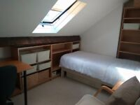 Flatmate wanted in a 3-Bedroom house, Sheffield S10