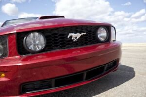 2009 Ford Mustang GT (45th Anniversary)