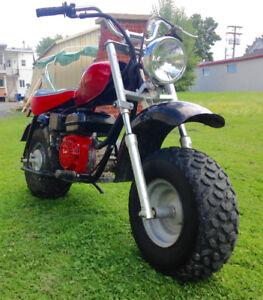 Mini baja 196 cc