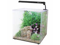 Aqua one 55 litre aquarium fish tabk