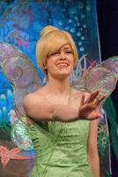 Tinkerbell and Friends can make your child's birthday magical!
