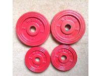 WEIDER CAST IRON WEIGHTS