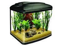 50l Fish Box Fish Tank.