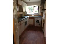 Beautiful One Bedroom house/flat available for letting
