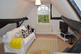 1 Bedroom Flat - Period Property - No Fees