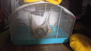 Cage peitt animaux
