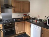 Double room to rent in Town Centre, bills included, single person only, fitted kitchen , garden
