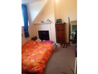 Double room in friendly professional houseshare next to St Andrews park