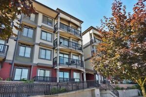 (VIRTUAL TOUR) Walking Distance To All Amenities!