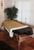 Mobile -In home Masseur Appointments