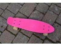 Penny board style Landsurfer skateboard