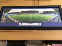 Free Goodison Park Picture