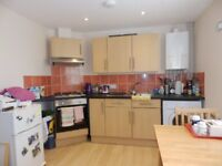 Lovely 1 bed house in Westbury-On-Trym-1 double bedroom,en-suite shower, lounge/kitchen, unfurnished